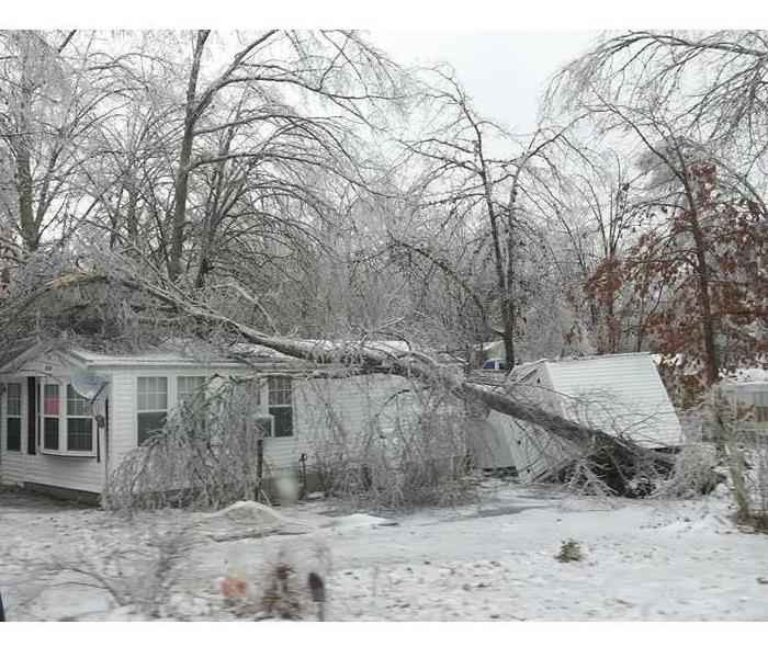 A large tree has fallen on top of a home and caused a good amount of damage to the building.