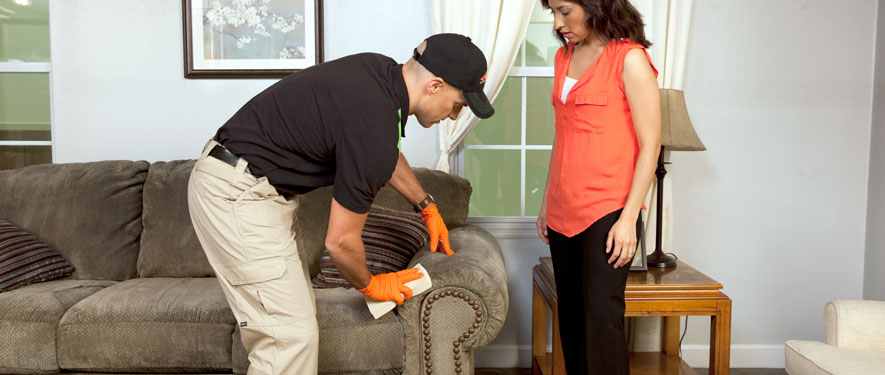 Hanover Township, PA carpet upholstery cleaning